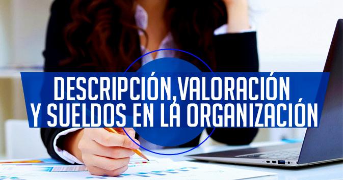 Descripción, Valoración y Sueldos en la Organización