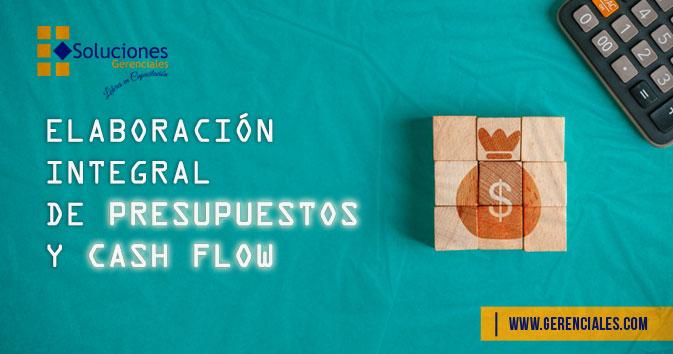 Elaboración Integral de Presupuestos y Cash Flow  ONLINE