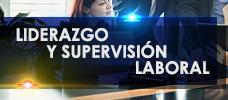 Liderazgo y Supervisión Laboral  ONLINE