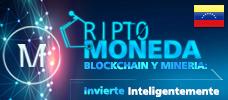 Criptomonedas, Blockchain y Mineria: Invierta Inteligentemente
