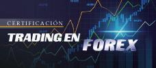 Trading en Forex  ONLINE