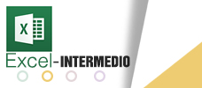 Excel Intermedio  ONLINE