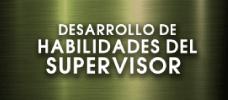 Desarrollo de Habilidades del Supervisor