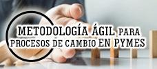 Metodología Ágil para Procesos de Cambio en PYMES  ONLINE