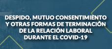 Despido, Mutuo Consentimiento y Otras Formas de Terminación de la Relación Laboral Durante el Covid-19  ONLINE