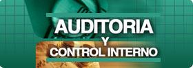 Auditoría y Control Interno  ONLINE