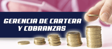 Gerencia de Cartera y Cobranzas  ONLINE